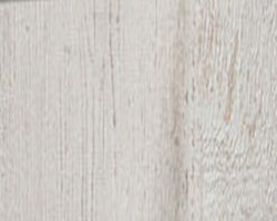 arctic pine jasny